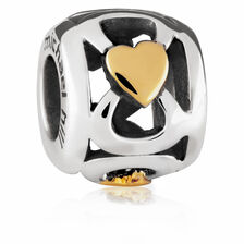 10ct Yellow Gold & Sterling Silver Charm