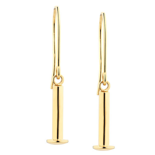 Charm Earrings in 10ct Yellow Gold